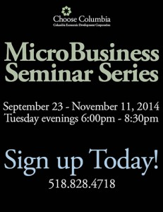 Micro Business 380